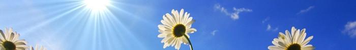 Come Essere Più Felice: 7 Metodi Scientifici