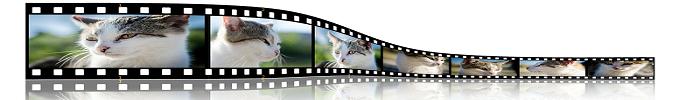 La Scienza delle Foto Profilo: 7 Tecniche Scientifiche Per Avere una Foto Profilo Perfetta